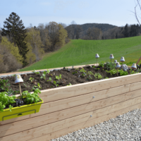 Hohbete Grünflächenpflege